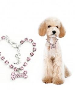 Crystal bones Collar for Dog