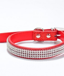 jeweled collars for dog