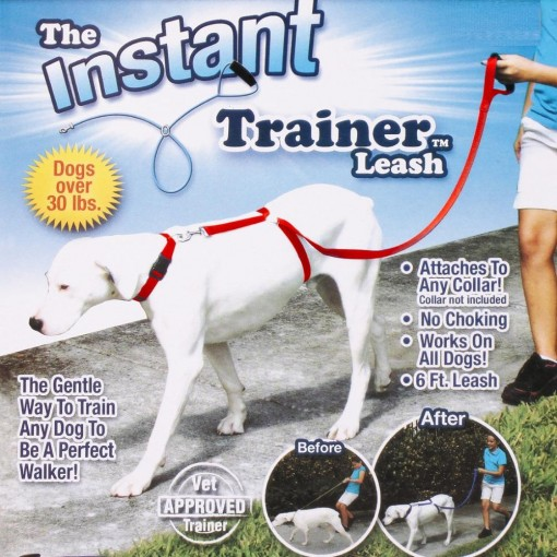 Leash to train your dog
