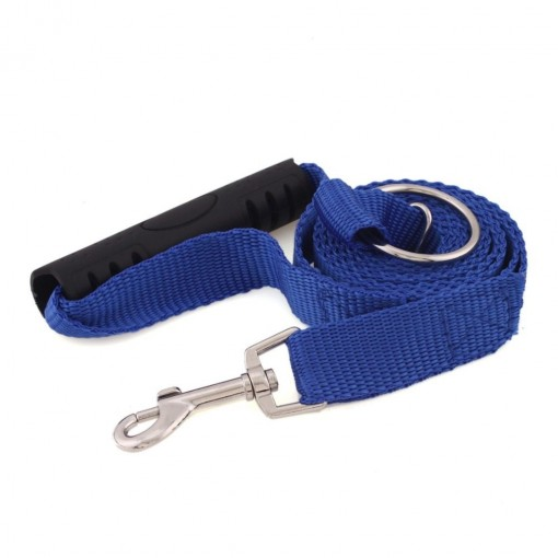 A leash to train your Dog