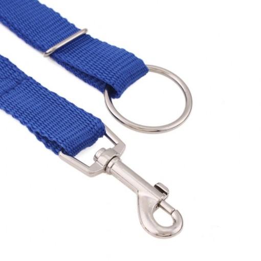 Dog Trainer leash