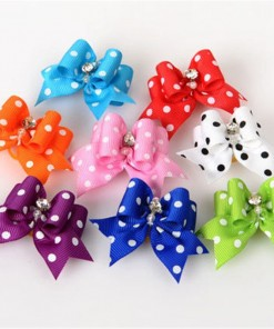 Ribbon Bowtie with Polka dot Design