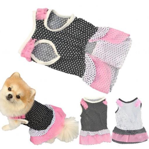 Fashionable Dress Coat Apparel