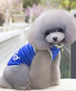 Clothing Summer Breathable Dog Pet Apparel
